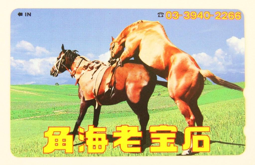 の 交尾 競馬 馬