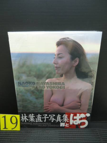 集 写真 林葉 直子 闘病中の林葉直子「ヘア写真集出版」の是非