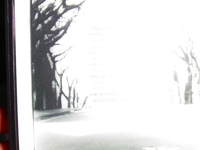Y136 ビデオ 東京少年 陽のあたる坂道で 岩井俊二監督 非レンタル落ち