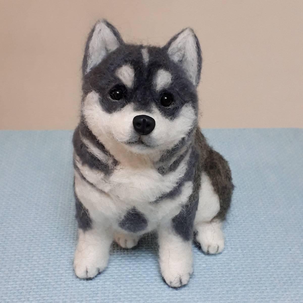 無料 子犬 シベリアン ハスキー