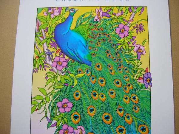 新品即洋書豪華版大人の塗り絵孔雀デザイン鳥120円 の落札