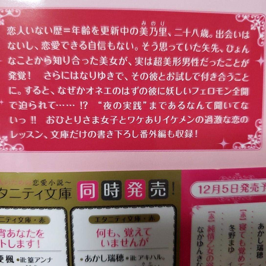 恋愛小説アルファポリス