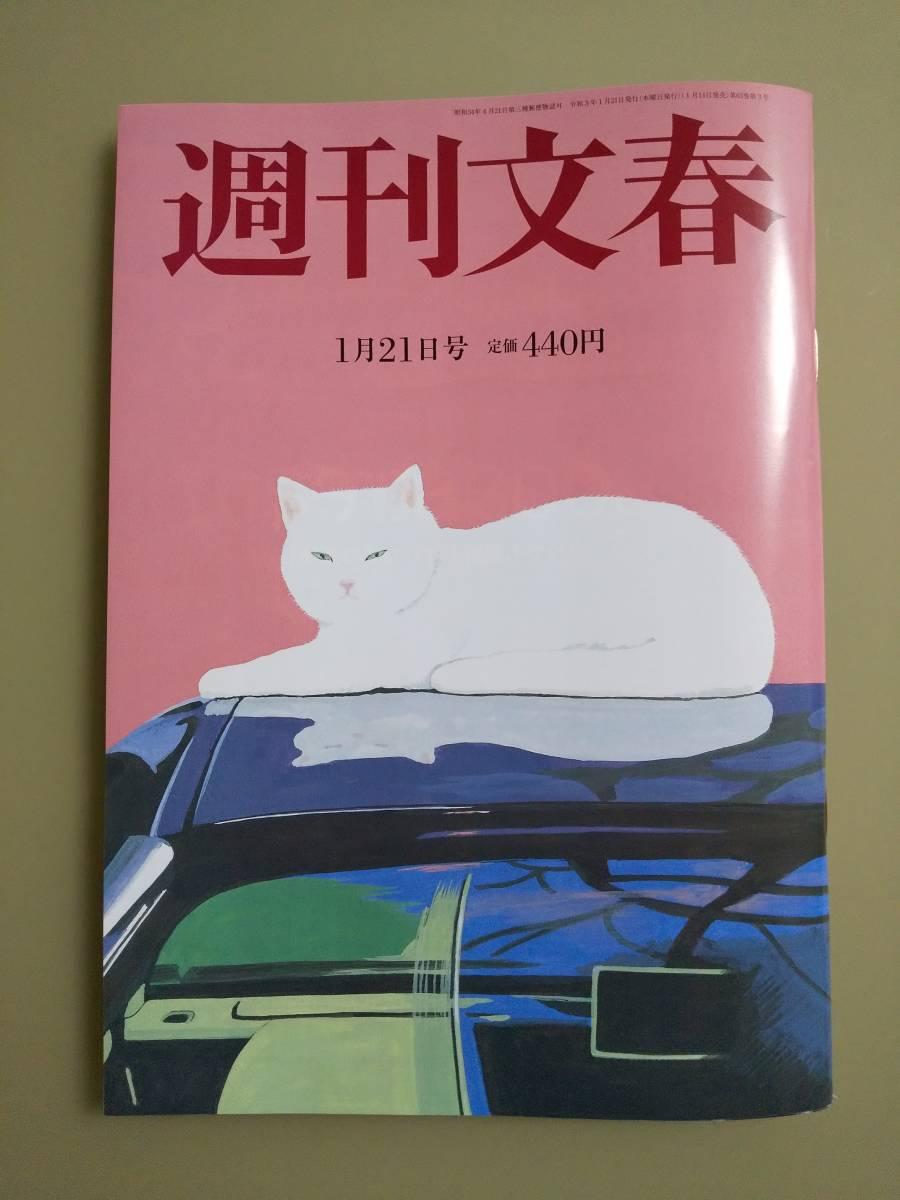 文藝 グラビア 春秋 晴子 小保方
