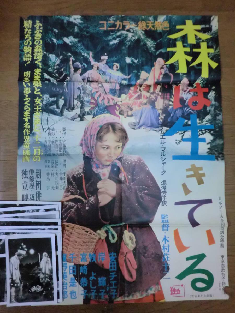 映画「森は生きている」ポスター+スチール写真10枚/木村荘十二監督S ...